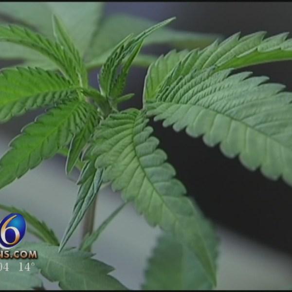 Skubick: Lawmakers Begin To Revise Medical Marijuana Regulations