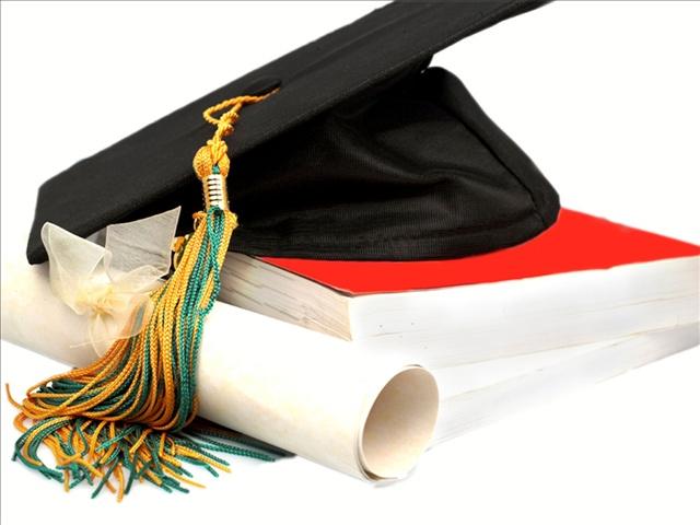 diploma_17378