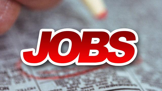 Jobs_16313