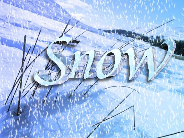 snow2015POLL_14838