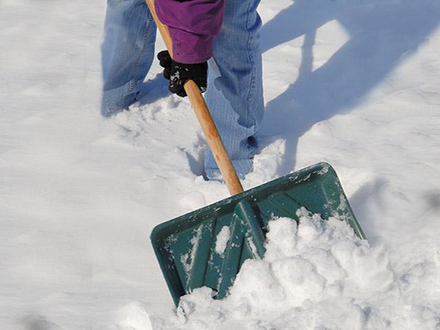 snowshovel2_8588