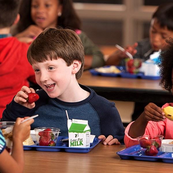 Kids Children Lunch_37132