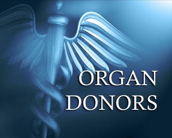 organ donors_11331