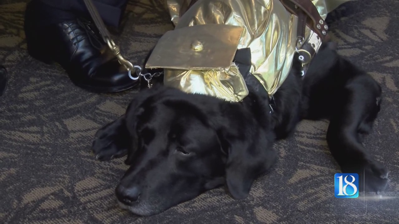 SERVICE-DOG-GRAD_155580
