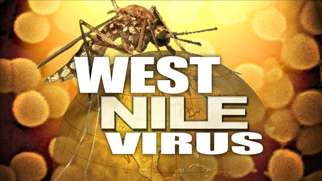 West Nile virus_83234