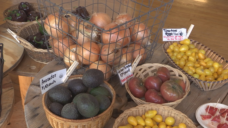 produce-food_185811
