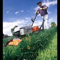 Lawnmower_253652