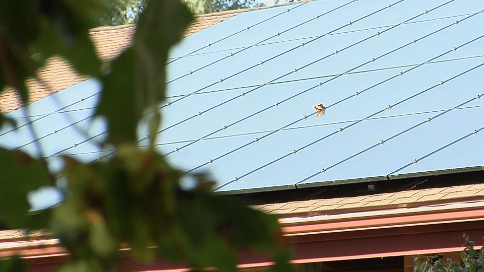 solar panels church_317008