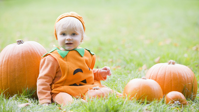 Baby Boy Outdoors In Pumpkin Costume With Real Pumpkins_330085