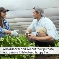 myspirit-finding_life_purpose_320371