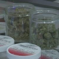 Deadline looms for pot shop licenses