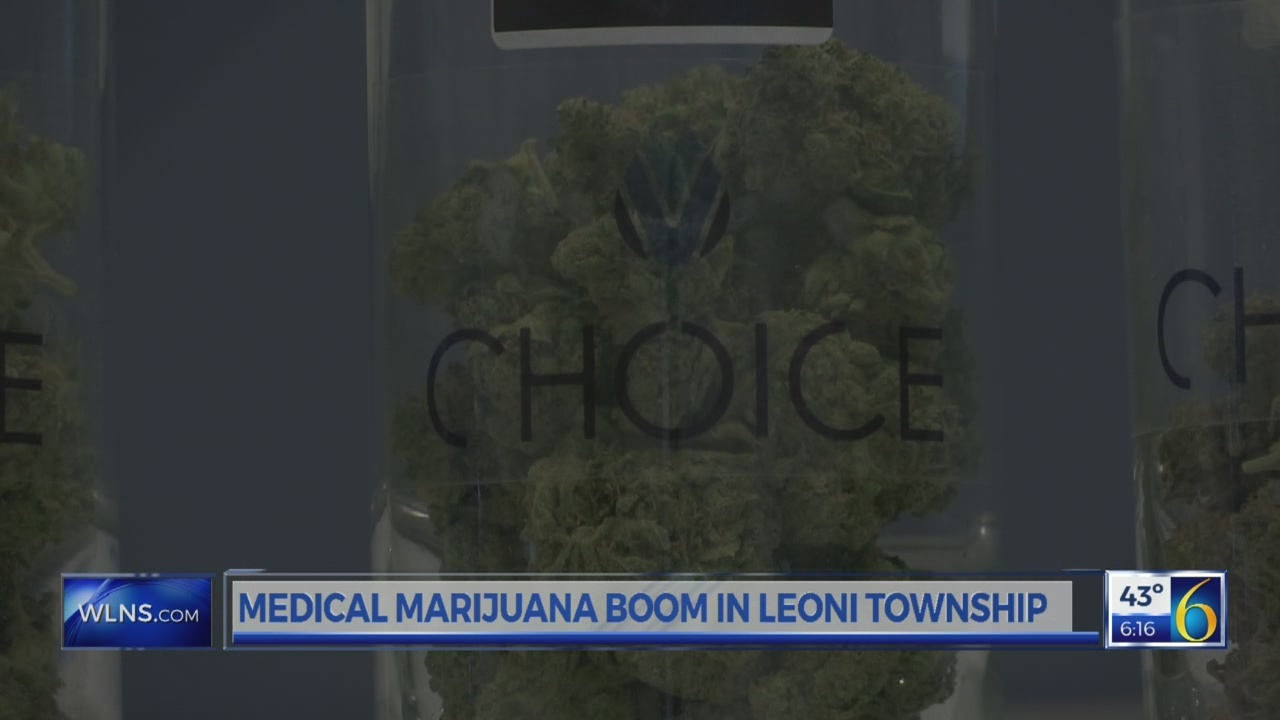 Medical_marijuana_boom_in_Leoni_Township_0_20180413222824