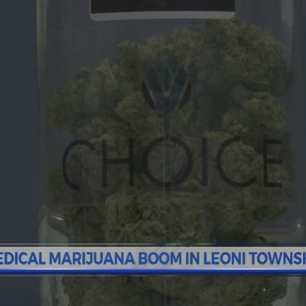 Medical_marijuana_boom_in_Leoni_Township_0_20180413222824