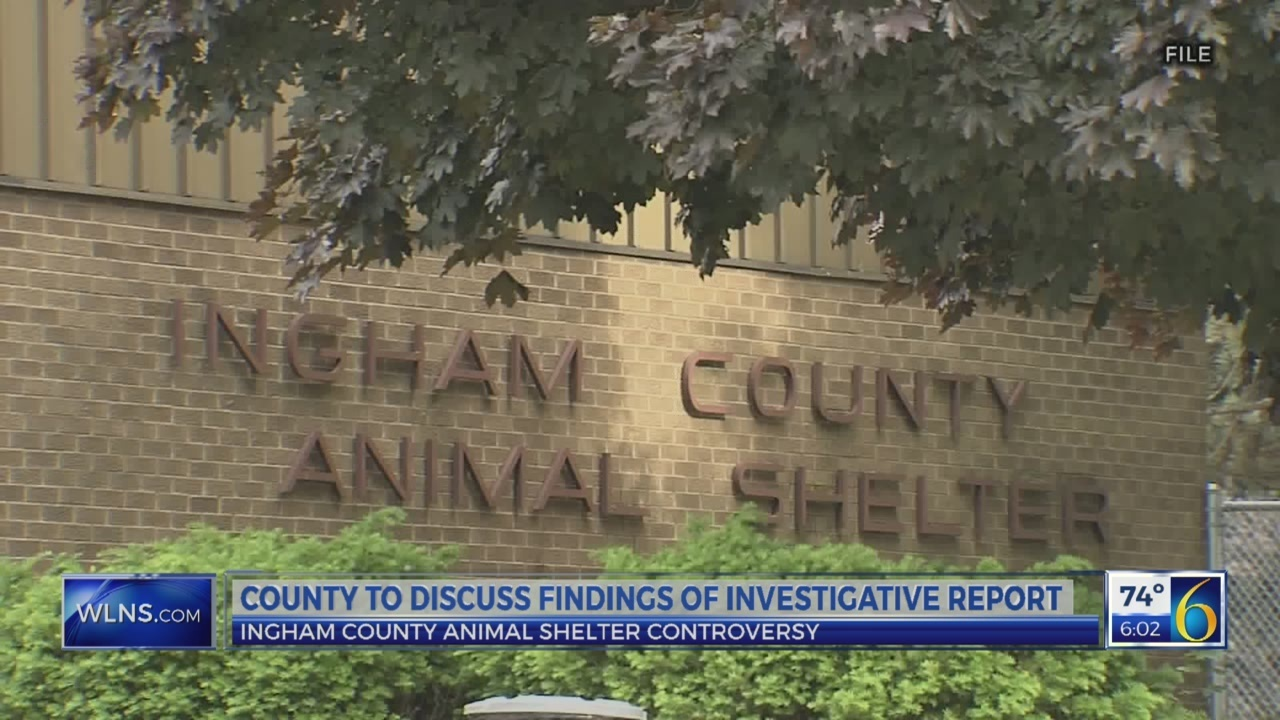 Report: Investigation finds