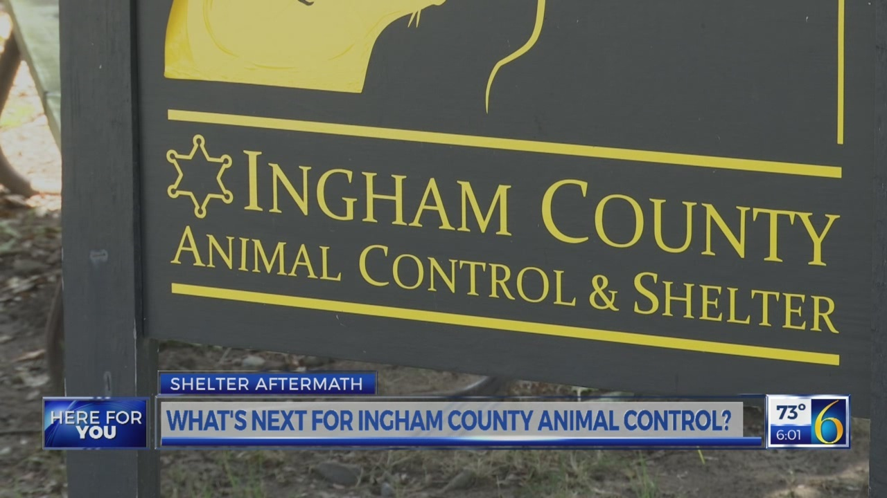 What_s_next_for_Ingham_County_Animal_Con_0_20180801223544