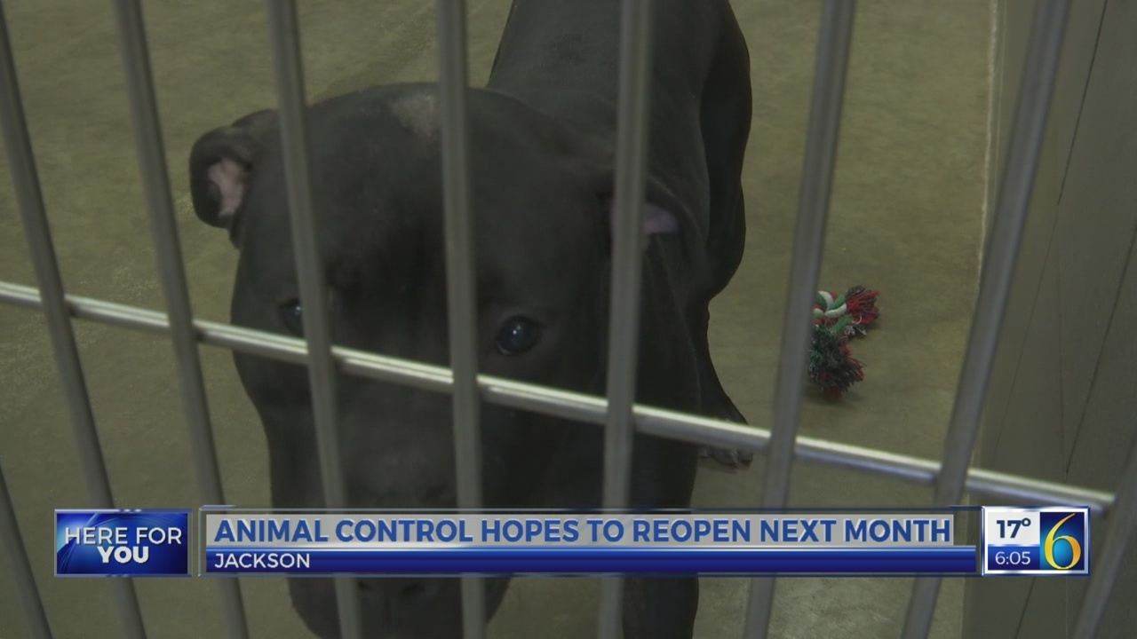 Jackson county animal control reopens