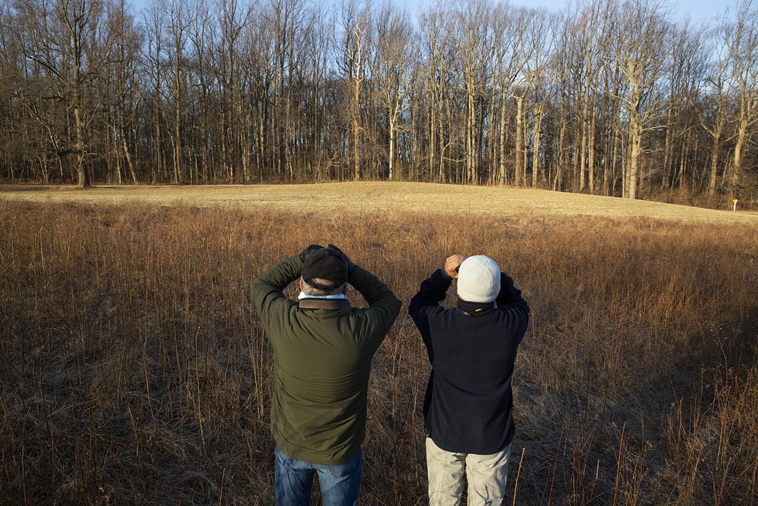 Bird Watching_Audubon Climate Watch_1552596074481.jpg.jpg