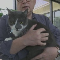 Pet Of The Day May 31