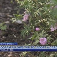 """Program allows you to """"adopt a garden"""""""