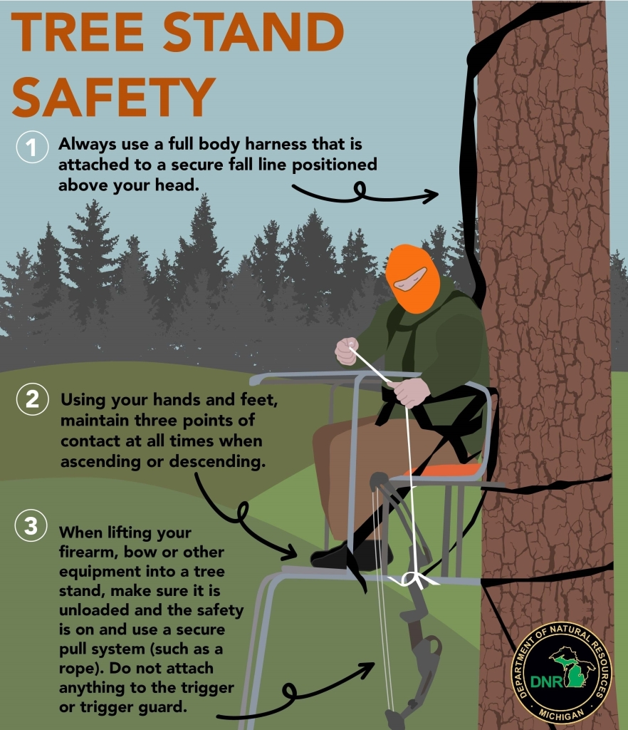 Michigan Officials Provide Tips For Hunting From A Tree